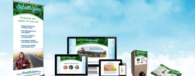 Webdesign, WordPress Themes and Design Do you want a new homepage? Then you have come to the right place. We specialize in all aspects of the web. We can create […]